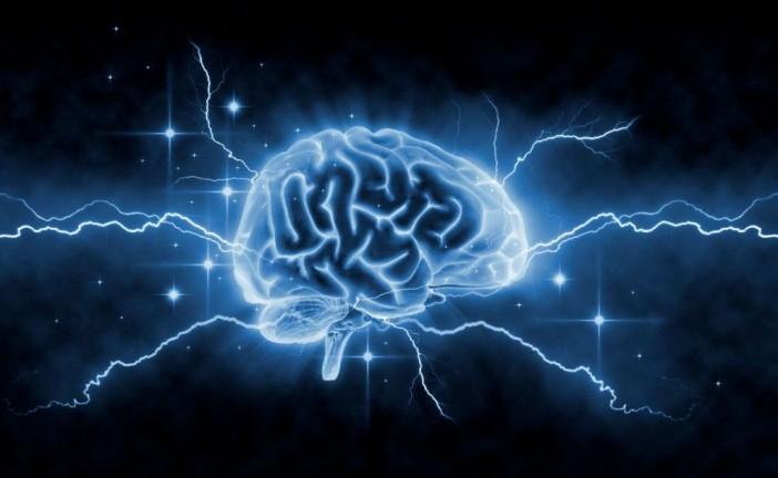 Az agy formálható