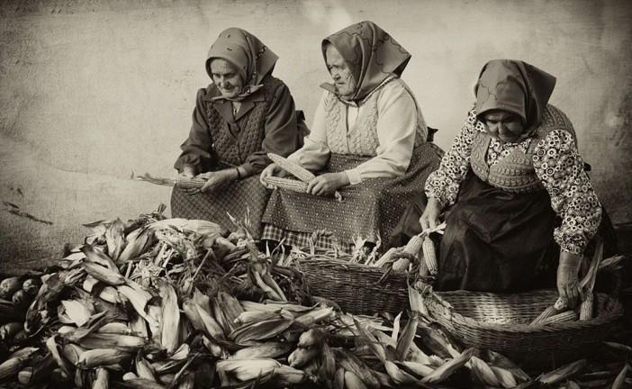 Miért nem voltak ételallergiásak nagyszüleink?