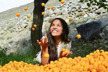 Hunzák ( A világ legegészségesebb és legidősebb emberei ) titka a jóga, B17 vitamin, és barack mag!